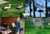 Pan Wroblewski otoczył zwierzęta czułą i prawdziwą opieką;-)))