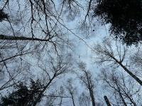 Widok z perspektywy orła, leżącego na śniegu