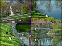 22 kwietnia- wiosenny poranek w parku