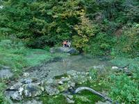 WYWIERZYSKO, źródło krasowe- tu wypływ na powierzchnię ziemi woda płynących w skrasowiałych skałach
